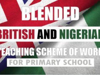 british curriculum for primary schools in nigeria