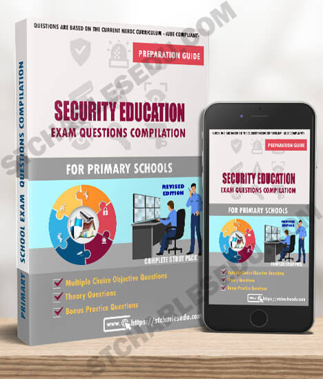 Security Education Examination Questions for Primary