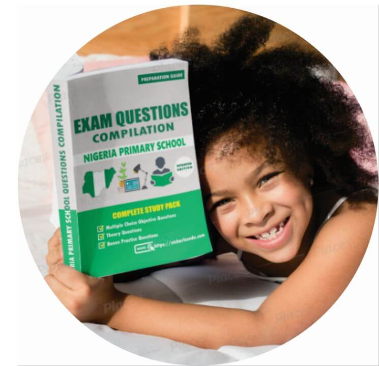 primary school exam questions papers